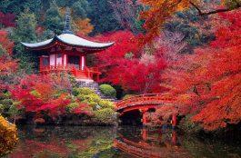Onde Ficar em Kyoto no Japão